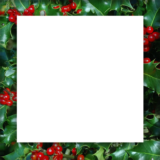 Free Christmas Holly Borders Clipart