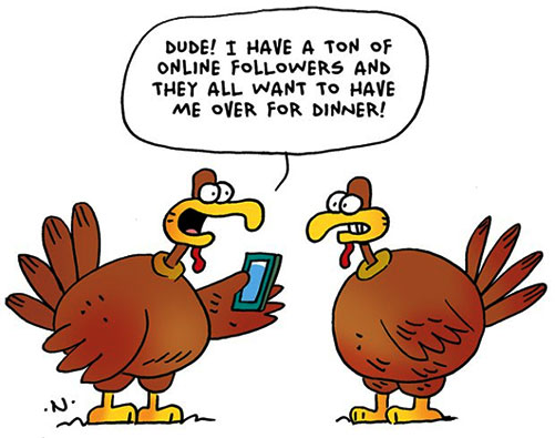 turkey talk
